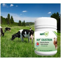 (a) MIP Colostrum, 100 Chewables (New Zealand)