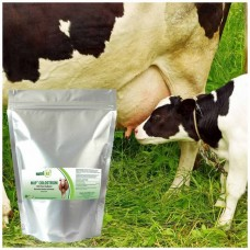 Colostrum 500g Powder (New Zealand)